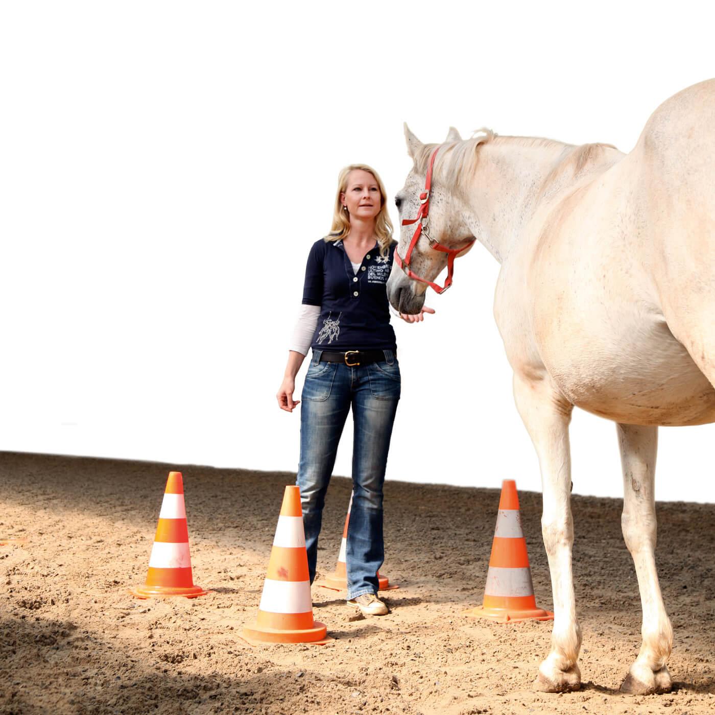 Cromme Coaching – Pferdegestützte Persönlichkeitsentwicklung: Persönliche Ressourcen, Stärken und Potentiale werden durch Pferdecoaching sichtbar gemacht und gefördert.