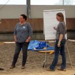 Pferdecoaching mit Cromme Coaching – Pferdegestützte Persönlichkeitsentwicklung