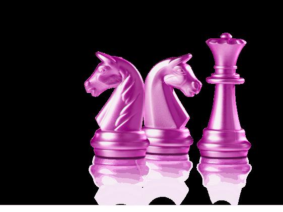 Cromme Coaching – Pferdecoaching Seminare: First Ladies – Dieses Angebot richtet sich speziell an Frauen.